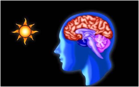 LRC, circadianos, LED-Human centric Lighting- iluminacion- luz