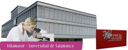 Uninvest-Universidad de Salamanca-base tecnológica- inversión