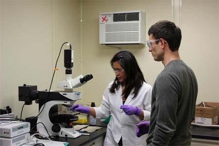 Óptica- nanotecnología- sensores- gases-sensor- OSU- gas