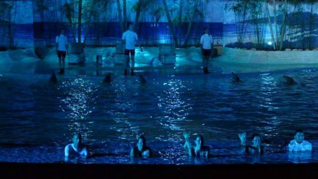 Iluminación- LED- Aquarium del Zoo de Madrid- Ge2- eficiencia energética