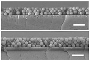 Películas delgadas de nano partículas de melanina sintéticas. Los tonos varían con el espesor y la densidad de empaquetado de las partículas.