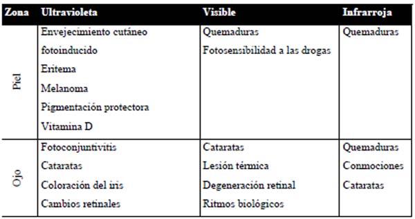 articuloint2