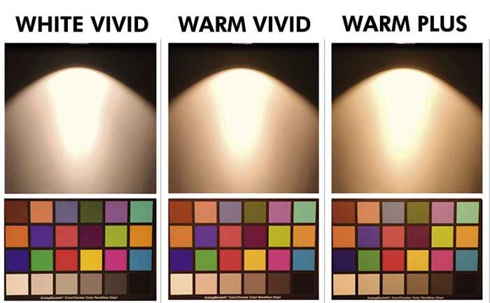 Citizen Electronics-VIVID- LED- SMD