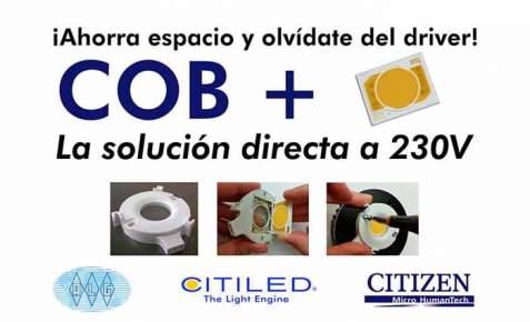 LED- COB +- Citizen Electronics-ALG