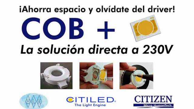 LED- COB +- Citizen Electronics-ALG