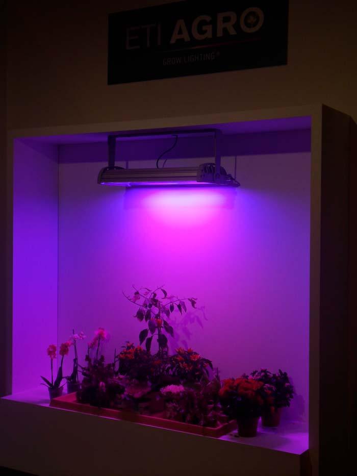 ETI-AGROLED-proyector – horticultura- ETI AGRO- Damiani