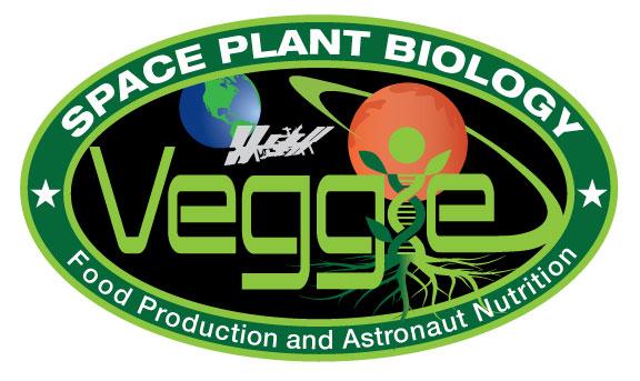 Veggie, Zinnia, NASA