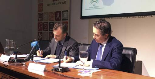 Junta de Andalucía- Philips-iluminación sostenible- cielo nocturno