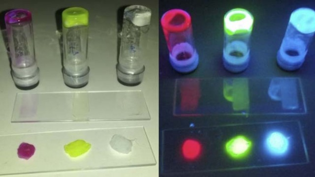 LED - luz - fluorescencia - BioLED - luminiscente