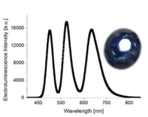 LED - luz - fluorescencia - BioLED - luminiscente
