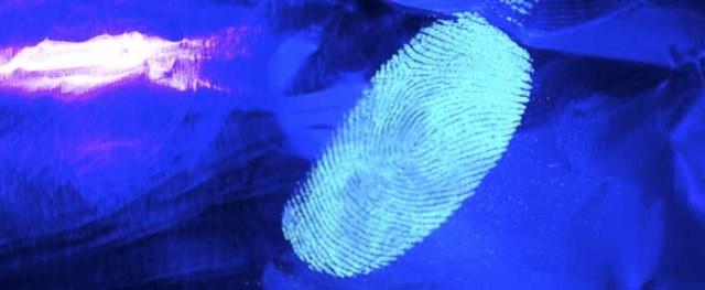 Luminiscentes - fosforescentes - luz - fluorescentes - materiales -huellas