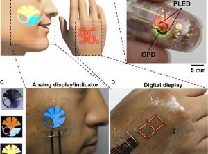 Universidad de Tokio- e-skin – lámina - Science Advances - monitorización