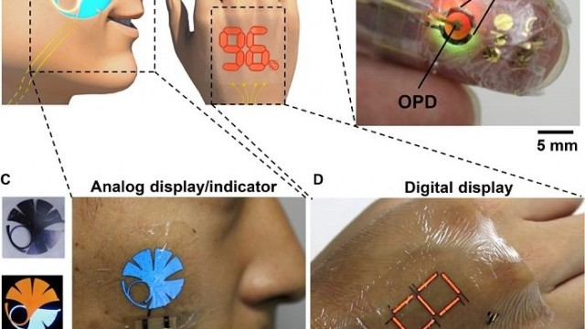 Universidad de Tokio- e-skin – lámina - Science Advances - monitorización