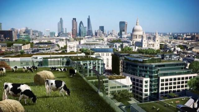 Premios Agoria - Smart Cities - Bélgica - federación