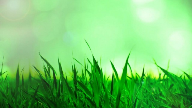 GreenMomentum - Cleantech Challenge México – networking – concurso - tecnología limpia