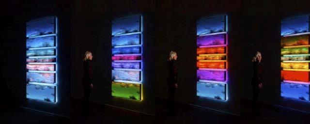 IED Master - taller gratuito - uso creativo de la luz - luz - iluminación -Maja Petric
