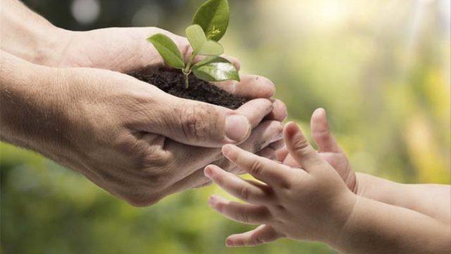 dia mundial del medioambiente- mediambiente- reciclaje