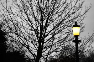 LED - Narón - alumbrado público -ahorro