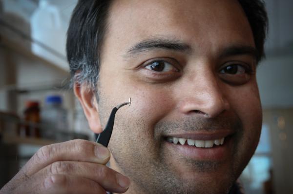 El profesor asociado de ingeniería eléctrica y computación de la Universidad de Utah, Rajesh Menon, mostrando la pequeña aguja quirúrgica que se puede usar con una cámara para tomar imágenes de las células cerebrales de un ratón.