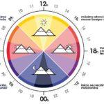 iluminaición, sensores, ciclo circadiano,