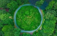 economía circular, ecolum, Recyclia