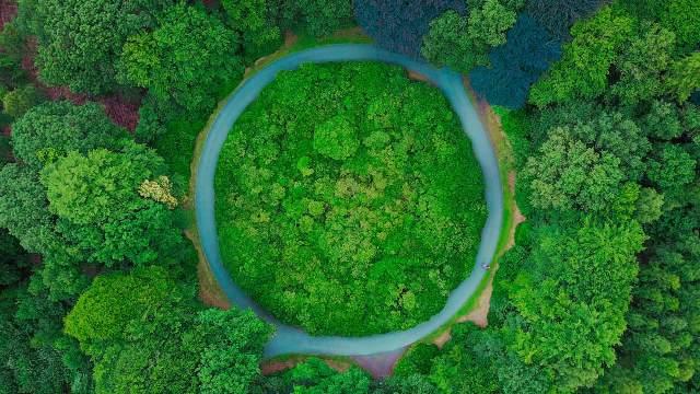 residuos, economía circular, ecolum, Recyclia