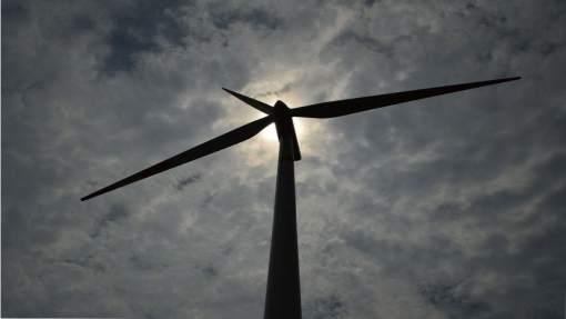 sostenible, eólica, Agencia Internacional de la Energía, AIE, recuperación económica, recuperación sostenible
