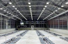 invernaderos, iluminación, LED
