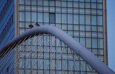 País Vasco, subvenciones, rehabilitación edificios,